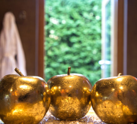 Apple spa - 4 star hotel in Lagundo in South Tyrol.